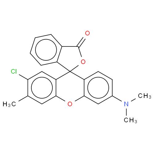 2'-chloro-6'-(dimethylamino)-3'-methylspiro[isobenzofuran-1(3H),9'-[9H]xanthene]-3-one  CAS 21121-62-0